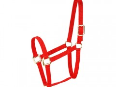 Horse Halter, Traditional Equine Nylon Halters